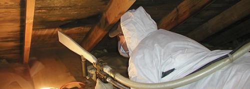 Dry ice removing the black staining in the attic roof decking